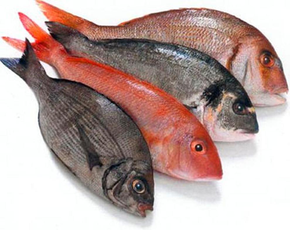 Полуфабрикаты из рыбы фото 7