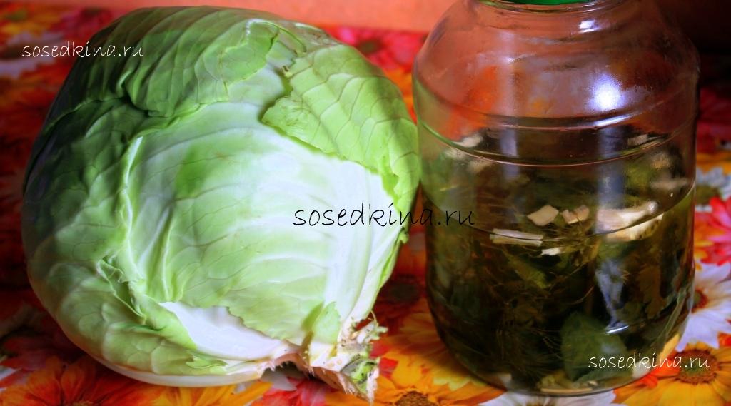 Капуста в огуречном рассоле рецепт